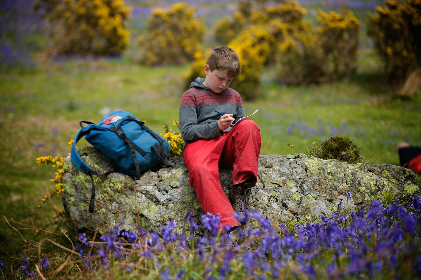 Pupil sitting on a boulder drawing the bluebells