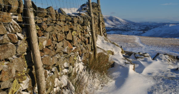Snow covered drystone wall overlooking Blencathra