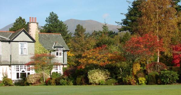 Beautiful Autumnal trees in Derwent Hill's gardens